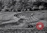 Image of American farm agriculture in 1930s United States USA, 1939, second 51 stock footage video 65675021581