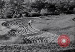 Image of American farm agriculture in 1930s United States USA, 1939, second 54 stock footage video 65675021581