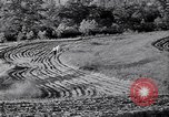 Image of American farm agriculture in 1930s United States USA, 1939, second 55 stock footage video 65675021581