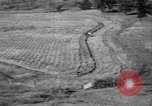 Image of American farm agriculture in 1930s United States USA, 1939, second 58 stock footage video 65675021581