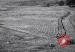 Image of American farm agriculture in 1930s United States USA, 1939, second 60 stock footage video 65675021581