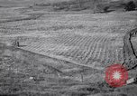 Image of American farm agriculture in 1930s United States USA, 1939, second 61 stock footage video 65675021581