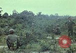 Image of military training Vietnam, 1971, second 60 stock footage video 65675021693