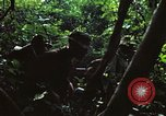 Image of military training Vietnam, 1971, second 20 stock footage video 65675021696