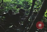 Image of military training Vietnam, 1971, second 21 stock footage video 65675021696