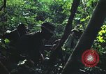 Image of military training Vietnam, 1971, second 23 stock footage video 65675021696