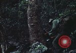 Image of military training Vietnam, 1971, second 49 stock footage video 65675021696