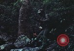 Image of military training Vietnam, 1971, second 55 stock footage video 65675021696