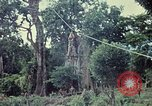 Image of military training Vietnam, 1971, second 5 stock footage video 65675021698