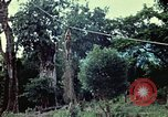 Image of military training Vietnam, 1971, second 13 stock footage video 65675021698