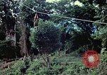 Image of military training Vietnam, 1971, second 14 stock footage video 65675021698