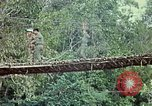 Image of military training Vietnam, 1971, second 27 stock footage video 65675021698