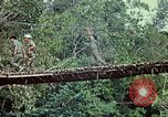 Image of military training Vietnam, 1971, second 28 stock footage video 65675021698