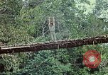 Image of military training Vietnam, 1971, second 33 stock footage video 65675021698