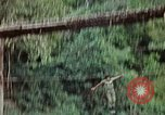 Image of military training Vietnam, 1971, second 35 stock footage video 65675021698