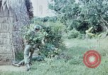 Image of military training Vietnam, 1971, second 46 stock footage video 65675021702