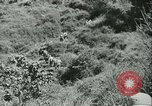 Image of Signal Corps United States USA, 1943, second 46 stock footage video 65675021720