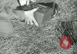 Image of Signal Corps European Theater, 1944, second 30 stock footage video 65675021723