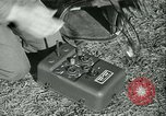 Image of Signal Corps European Theater, 1944, second 33 stock footage video 65675021723