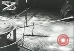 Image of US Army Signal Corps messaging and communications in World War 2 United States USA, 1944, second 5 stock footage video 65675021731