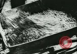 Image of World War II Germany, 1940, second 26 stock footage video 65675021735