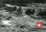 Image of Battle of France France, 1940, second 20 stock footage video 65675021755