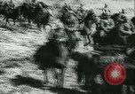 Image of Battle of France France, 1940, second 23 stock footage video 65675021755