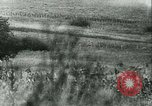 Image of Battle of France France, 1940, second 32 stock footage video 65675021756
