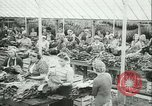 Image of Farming tobacco and fur in Denmark Denmark, 1942, second 12 stock footage video 65675021778