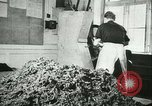 Image of Farming tobacco and fur in Denmark Denmark, 1942, second 17 stock footage video 65675021778