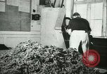 Image of Farming tobacco and fur in Denmark Denmark, 1942, second 19 stock footage video 65675021778
