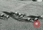 Image of Horse race at Auteuil Racecourse Paris France, 1942, second 31 stock footage video 65675021780