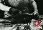 Image of Fish skin plant in Germany Germany, 1942, second 8 stock footage video 65675021789