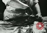 Image of Fish skin plant in Germany Germany, 1942, second 9 stock footage video 65675021789