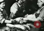 Image of Fish skin plant in Germany Germany, 1942, second 15 stock footage video 65675021789