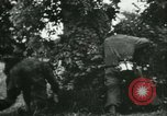 Image of German troops France, 1944, second 49 stock footage video 65675021804