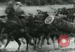Image of German Army units France, 1940, second 3 stock footage video 65675021834