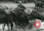 Image of German Army units France, 1940, second 4 stock footage video 65675021834