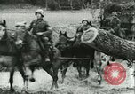 Image of German Army units France, 1940, second 6 stock footage video 65675021834