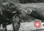 Image of German Army units France, 1940, second 8 stock footage video 65675021834