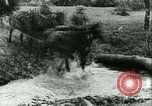 Image of German Army units France, 1940, second 9 stock footage video 65675021834