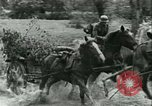 Image of German Army units France, 1940, second 11 stock footage video 65675021834