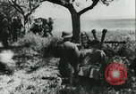 Image of German Army units France, 1940, second 20 stock footage video 65675021834