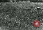 Image of German Army units France, 1940, second 53 stock footage video 65675021834