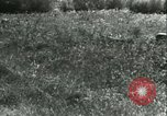 Image of German Army units France, 1940, second 54 stock footage video 65675021834