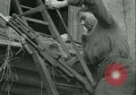 Image of French Resistance Chateaudun France, 1944, second 45 stock footage video 65675021860