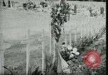 Image of Allied cemetery Paris France, 1945, second 47 stock footage video 65675021884