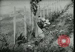 Image of Allied cemetery Paris France, 1945, second 51 stock footage video 65675021884