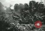 Image of Grasshopper aircraft Bougainville Island Papua New Guinea, 1944, second 61 stock footage video 65675021886