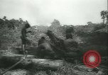 Image of Grasshopper aircraft Bougainville Island Papua New Guinea, 1944, second 62 stock footage video 65675021886